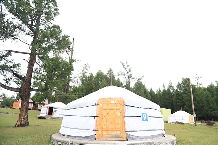 Yurt stay - 3 beds in Khuvsgul Lake