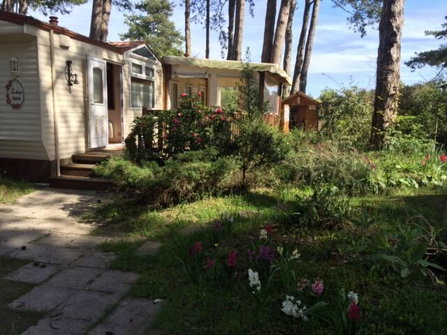 Mobilhome de charme dans camping 4* - Quend - Bungalow