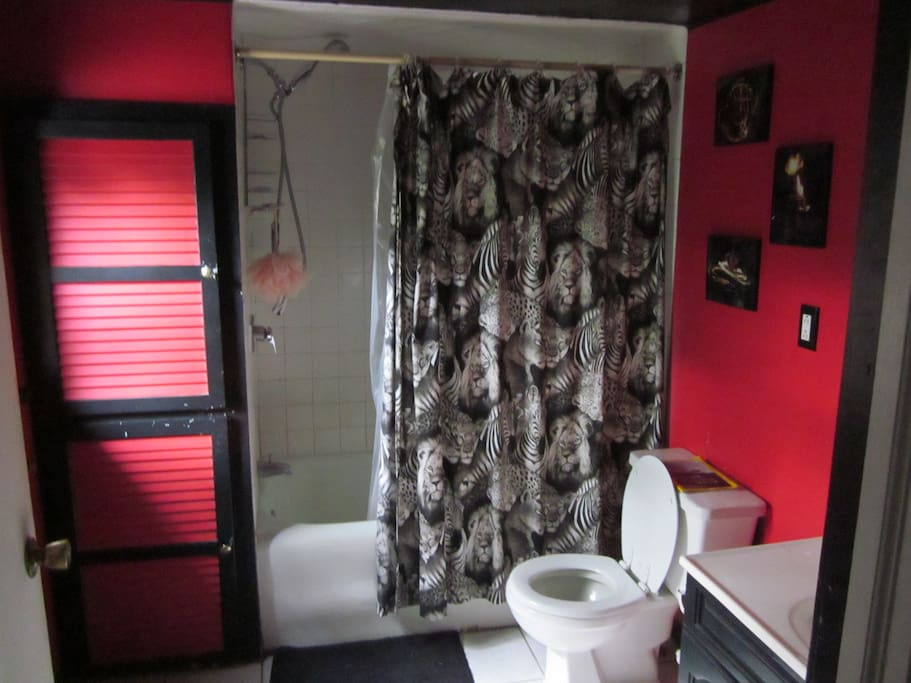 Shared bathroom upstairs. Extra toilet/sink downstairs.