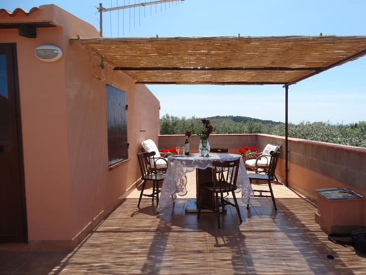 Comfortable flat near Alghero