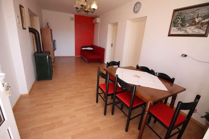 Apartment Tereza 1 - Privlaka - Apartment