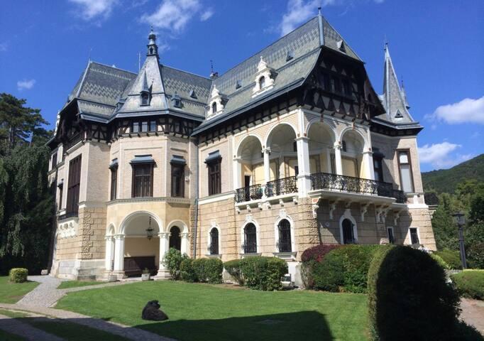 Historische Schlosswohnung unweit von Wien