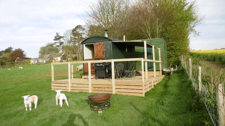 Shepherd's Hut in a beautiful spot in Dorset