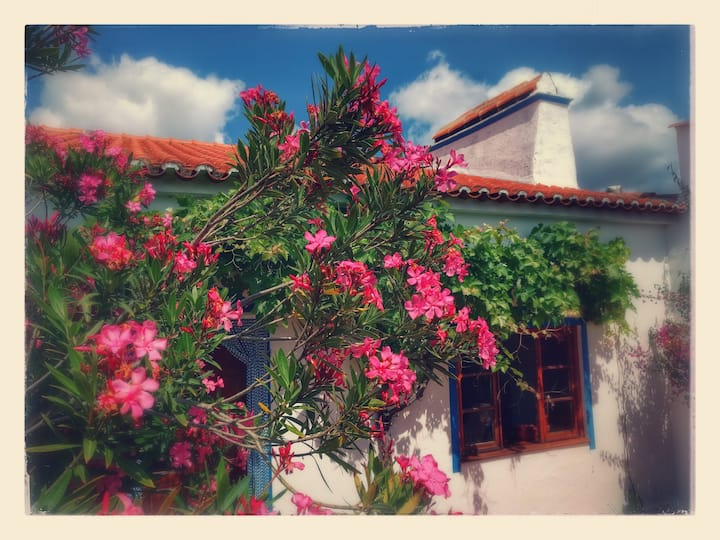 Ferienhaus im Alentejo/Südportugal
