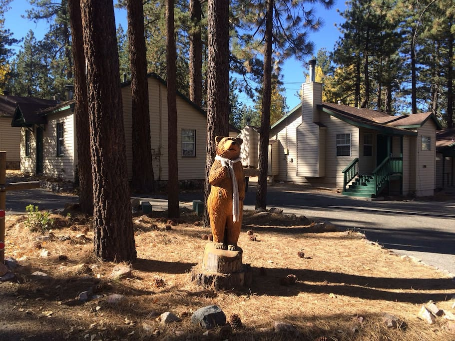 Lakewood cabins studio 1bath cabin 11 cabins for rent in for Cabins big bear lake ca