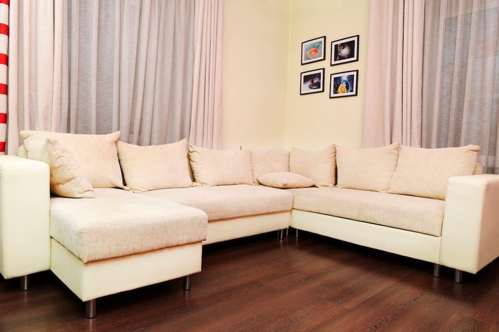 Кожаный, раскладной диван