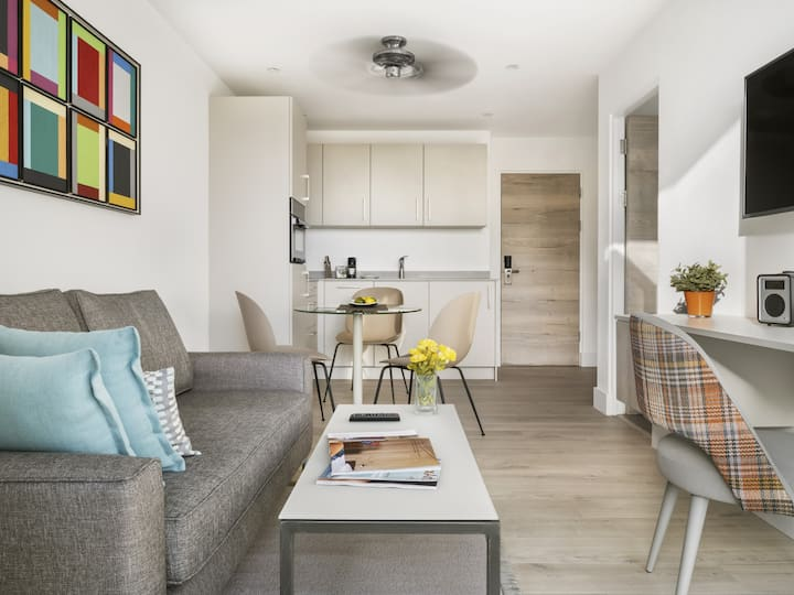 Spacious NEW Modern One Bed Apartment Suite