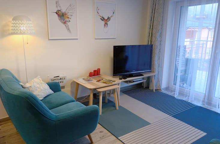 Dwupoziomowy Apartament Zdrojowy w Ustroniu