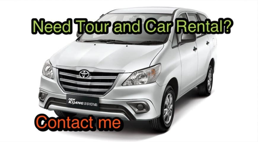 Guests can rent a car include the driver