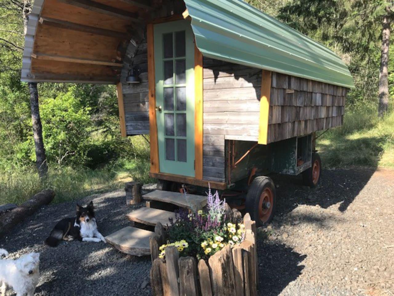 Sheepherder's Wagon #2