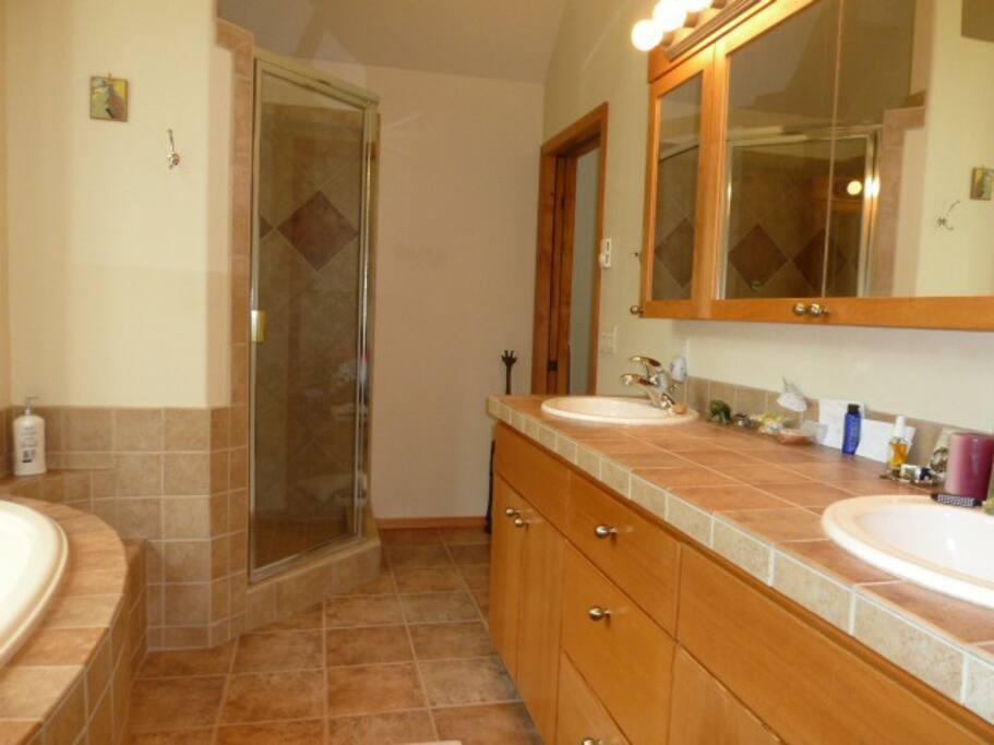 Master bathroom, tub and shower