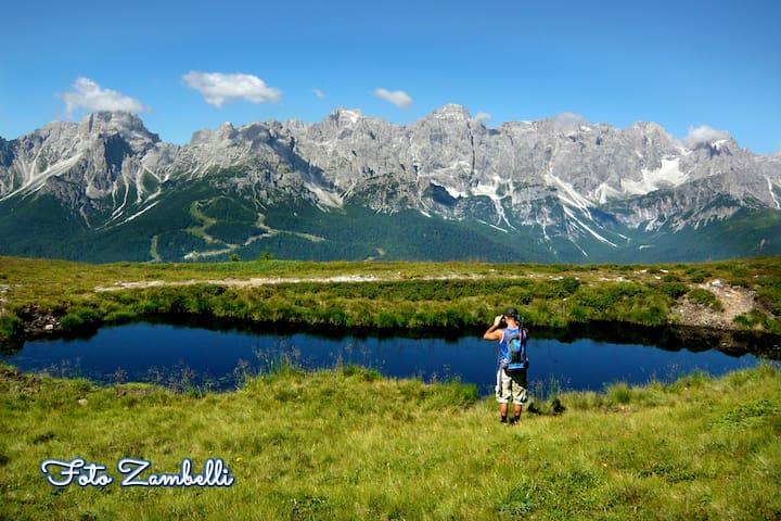 CASA ZAMBELLI VAL COMELICO DOLOMITI