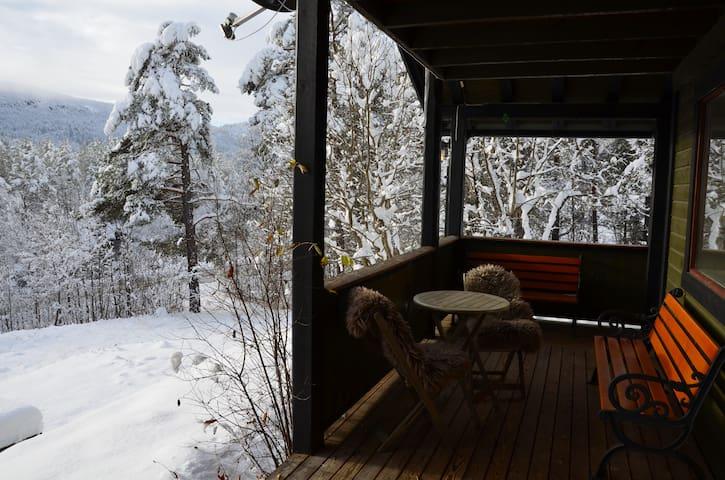 Comfortable chalet with sauna and jacuzzi bathtub