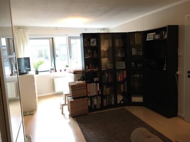Schönes 39qm-1-Zimmer Apartment in Innenstadt Nähe