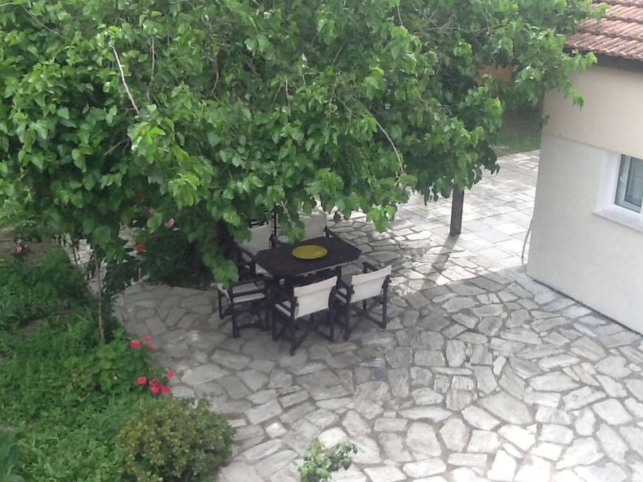 Private yard as it looks this month. Enjoy the wild berry tree shade and the quality veranda furniture (you can move where it suits you best)