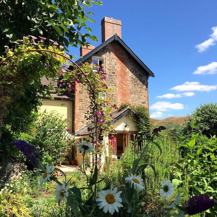 All Stretton, Shropshire: Buxton House B&B