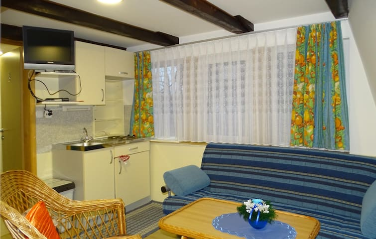 Holiday apartment with 2 bedrooms on 47m² in Begunje na Gorenjskem