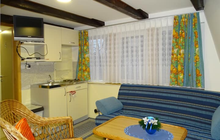 Amazing apartment in Begunje na Gorenjskem with WiFi and 2 Bedrooms