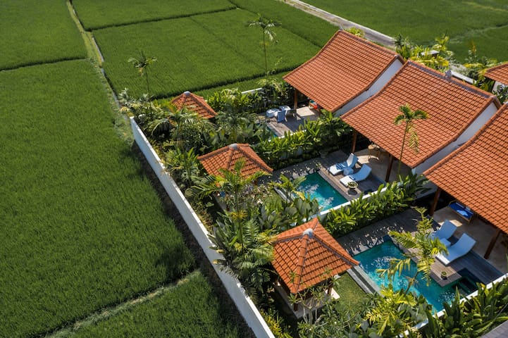 Luxury One-Bedroom Villa with Private Pool