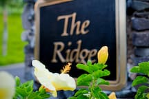 The Ridge- a pot of gold at the end of the rainbow