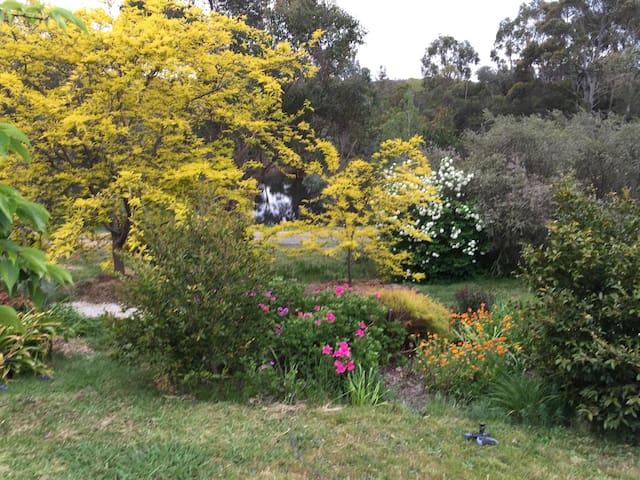 Kangaroo Heaven