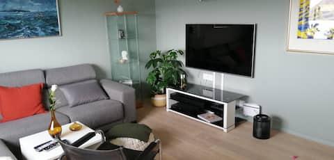 Nyoppusset og komfortabel leilighet i sentrum