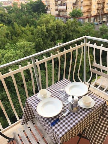 balcone con il parco sullo sfondo