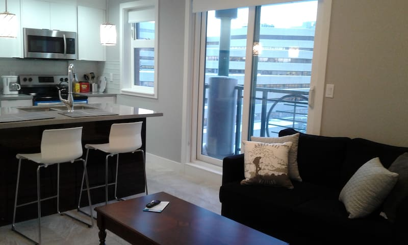 New DT Condo; Chinatown, A/C, Easy Access, WiFi