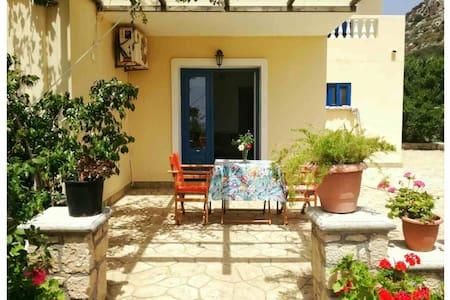 Venetia's Garden Studio