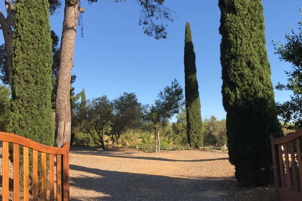 Entrée du jardin - entrance to the garden part