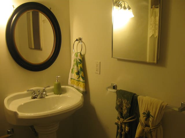 3 Queen beds, Prvt entry, Kit&bath, bus routes - Silver Spring - Apartment