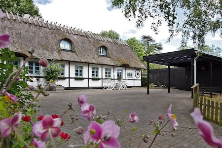 Cosy house near Roskilde and Copenhagen - Tune