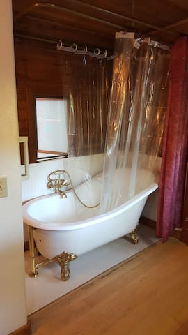 Bath tub and shower