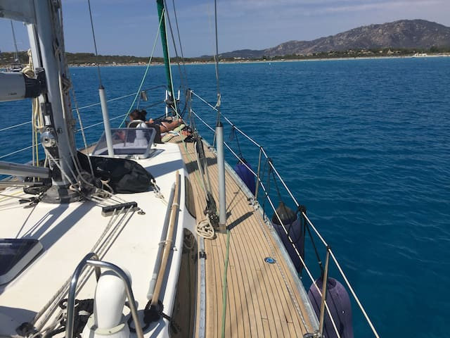 Sailing in the Tuscan islands, Elba and Capraia - Piombino - Båt