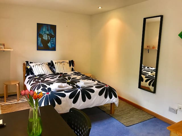 Vibrant Room in Tower Hill