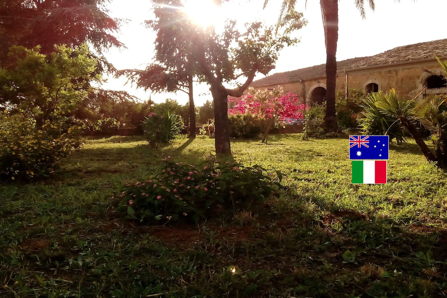 Olive Grove Relax 6km from Comiso airport, Sicily - Guesthouses for ...