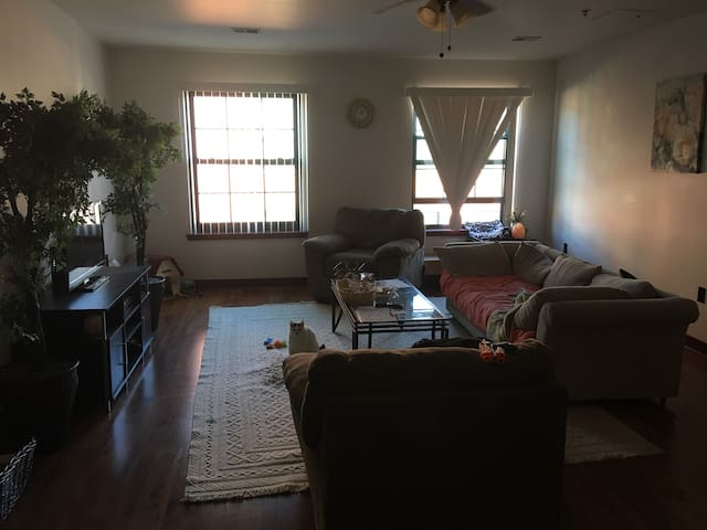 Fitchburg 2017  Top 20 Fitchburg Vacation Rentals  Vacation Homes   Condo  Rentals   Airbnb Fitchburg  Massachusetts  United States  weekly rentals. Fitchburg 2017  Top 20 Fitchburg Vacation Rentals  Vacation Homes
