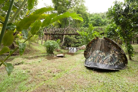 Dreamcaught- Treehouses - Tent