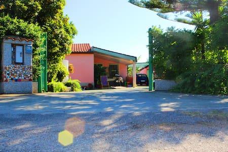 Appartamento Dahlia in Villa (N°1) - Drapia