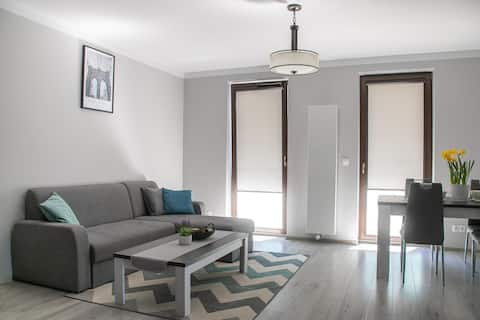 Cracow Modern Apartment/Parking, Views, Group of 6