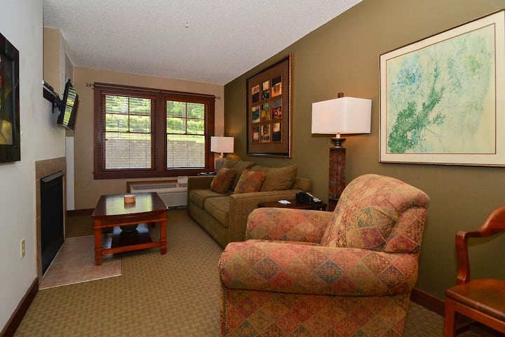 A120- Standard view suite w/ private bedroom, first floor unit, flat screen tv!
