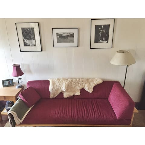 Cozy 1 bedroom with amazing view - Burlington - Daire
