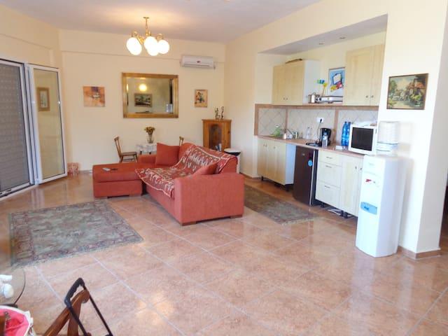 Mimosa House - Argolida - Lägenhet