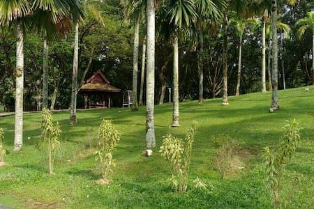 Room in beautiful condo and area - Kuala Lumpur - Huoneisto