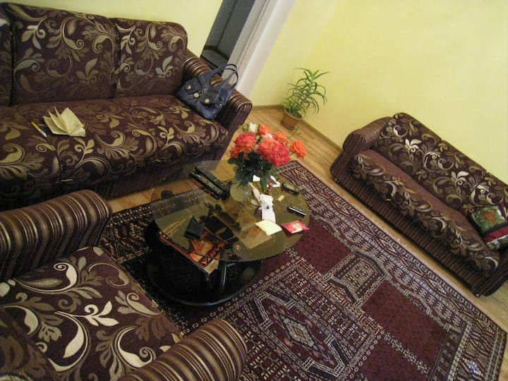 Clean, Comfortable Apt in City Center