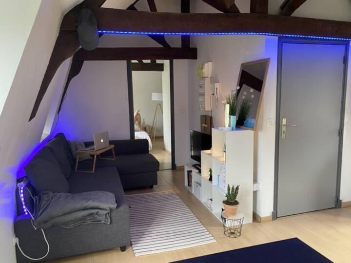 Appartement cosy centre de Lille