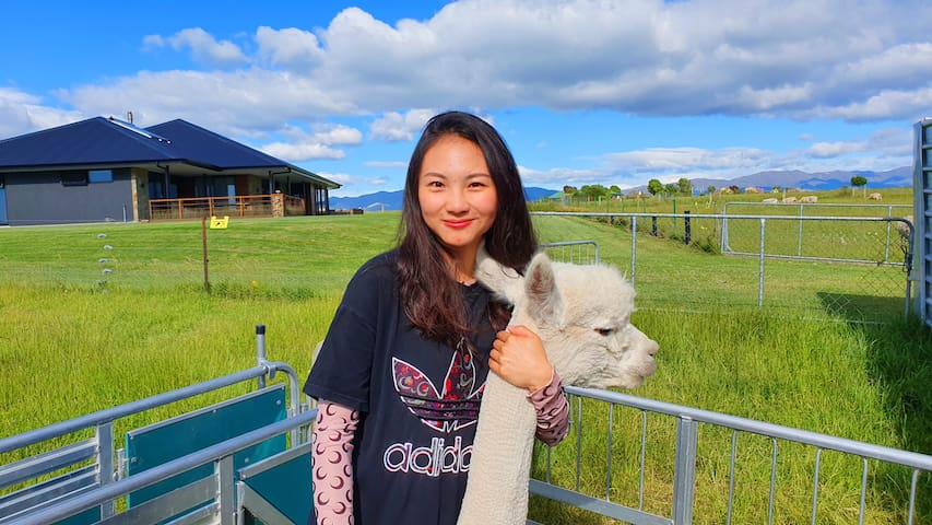 SHILOH ECO FARM - Alpacas, Views, Deluxe Farm Stay