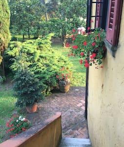 Accogliente Appartamento - Castiglion Fibocchi
