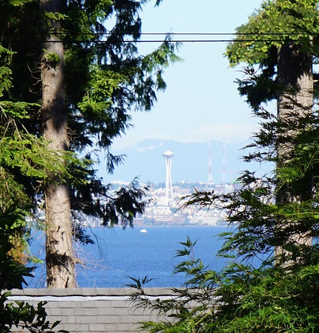 Space Needle in Seattle, as seen from the cottage