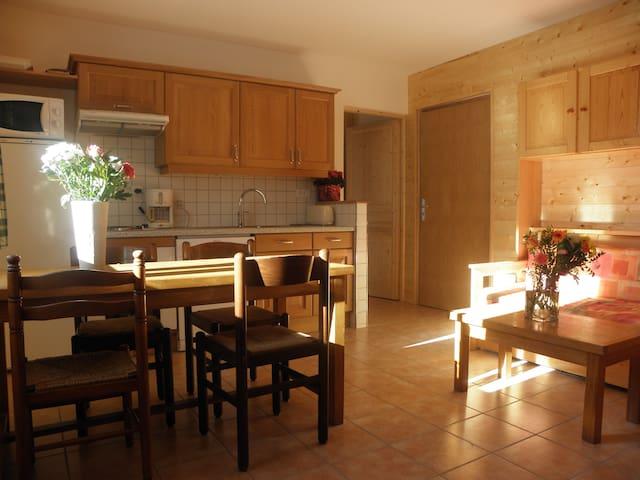 confortable studio dans petit immeuble - Vénosc - Flat